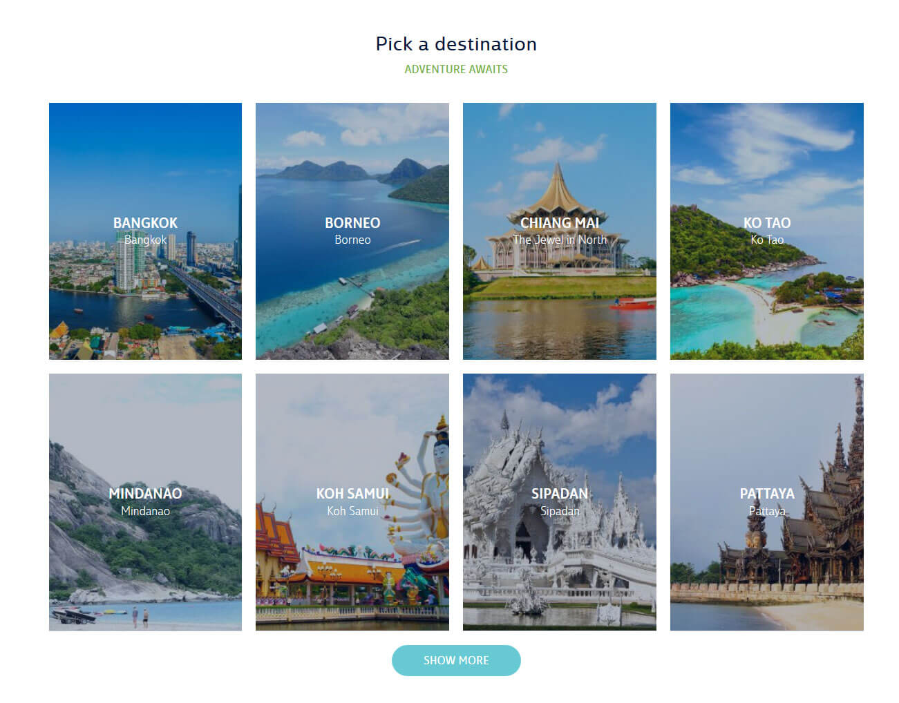 Travel Activity Booking Website Development
