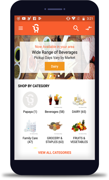 Online grocery store software
