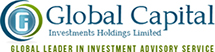 Global Capital Investments Corporate Website Design