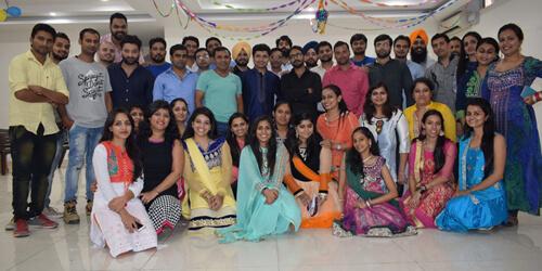 Expert Web Desgin & Development Team